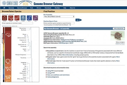 Just launched! Genome Browser in the Cloud (GBiC) introduces more freedom to collaborate, plus faster Genome Browser installations.