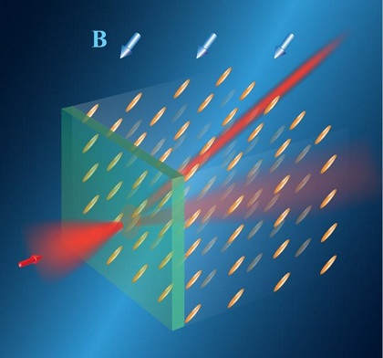 CAPTION Routing of light in a liquid crystal by a magnetic field (B). The orientation of the field determines the orientation of rod-shaped molecules of the liquid crystal and defines direction of the light trajectory. This trajectory can be rapidly changed by changing the orientation of the magnetic field.
