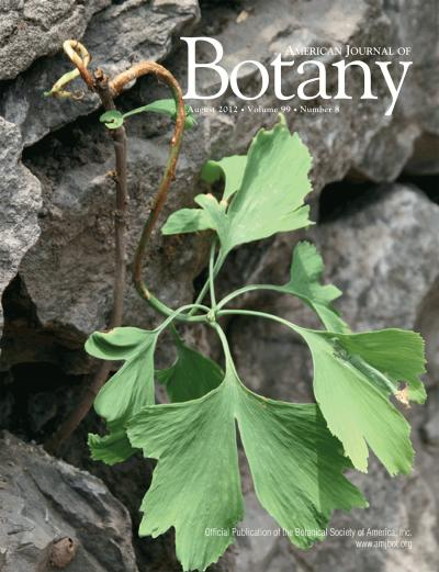 This is the American Journal of Botany August 2012 cover. The issue contains the article Ontologies as integrative tools for plant science by Ramona Walls et al.  Credit: Cindy Q. Tang