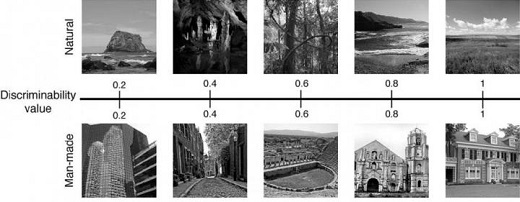 CAPTION Researchers trained a computational model to rate the ease of discriminating scenery categories, such as natural vs. man-made. That allowed them to test how people analyze what they see. CREDIT Serre lab/Brown University