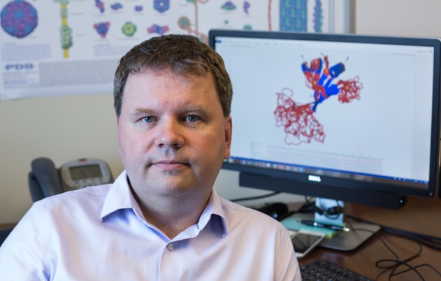 Lukasz Kurgan, Ph.D., with a picture of an intrinsically disordered protein behind him. Kurgan has developed bioinformatics computer programs that help determine the functions of these proteins.