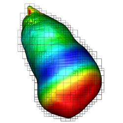 Isosurface of the flame front colored by speed of the flame front. This is a small feature found inside the star as the supernova process begins. Courtesy Rob Sisneros, Dave Semeraro, and Andy Nonaka from data generated by the Woosley PRAC team, University of California Observatories