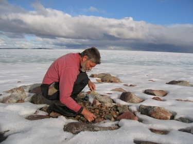 Gifford Miller collects vegetation samples on Baffin Island. (Photo courtesy University of Colorado Boulder.)